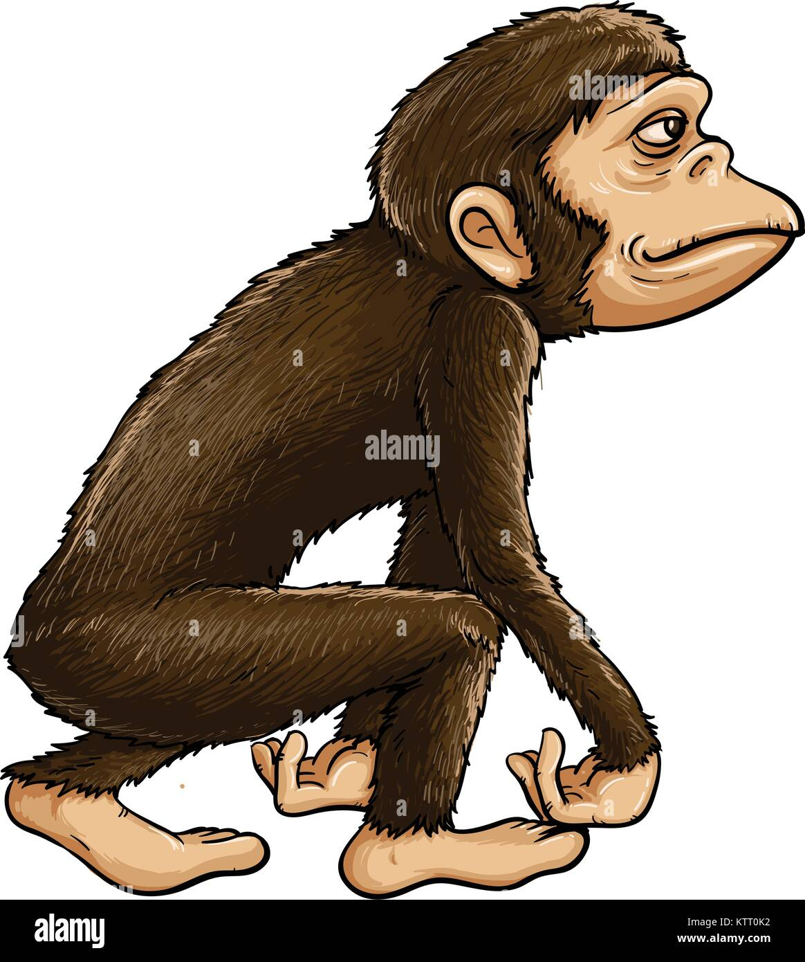 Evolution Of Man From Ape High Resolution Stock