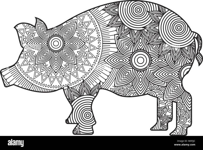 hand drawn for adult coloring pages  pig zentangle
