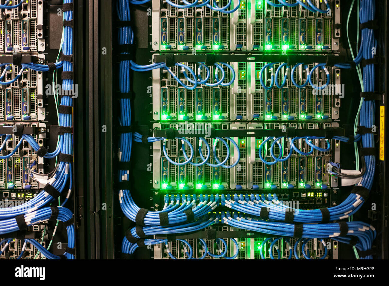 Servers with CAT 5 cables on racks in a large computere server farm