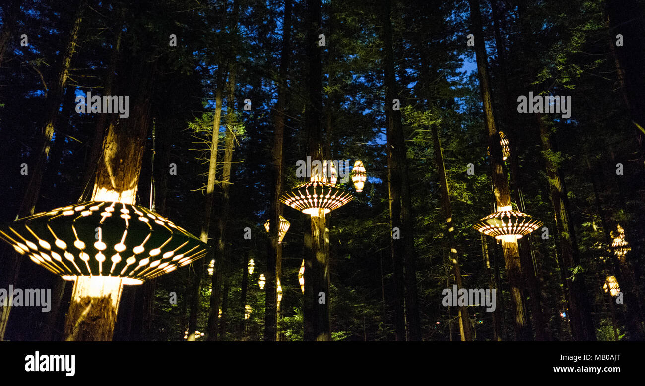 https www alamy com rotorua new zealand november 11 2017 outdoor lighting by david trubridge in the redwoods treewalk visitors can explore rotoruas redwood forest under david trubridge lighting installation at night which has a total of 30 lantern image178873264 html