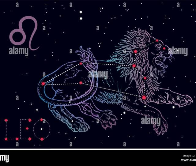 Lying Lion On A Cosmic Blue Background With Stars Horoscope Astrology Astronomy Fantasy Mythology Vintage Engraving Tattoo Style Hand Drawn Vector