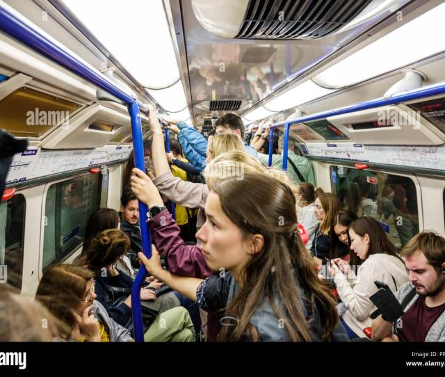 London England United Kingdom Great Britain Kensington South Kensington Underground Station Subway Tube Public Transportation Mass Transit Train Carri