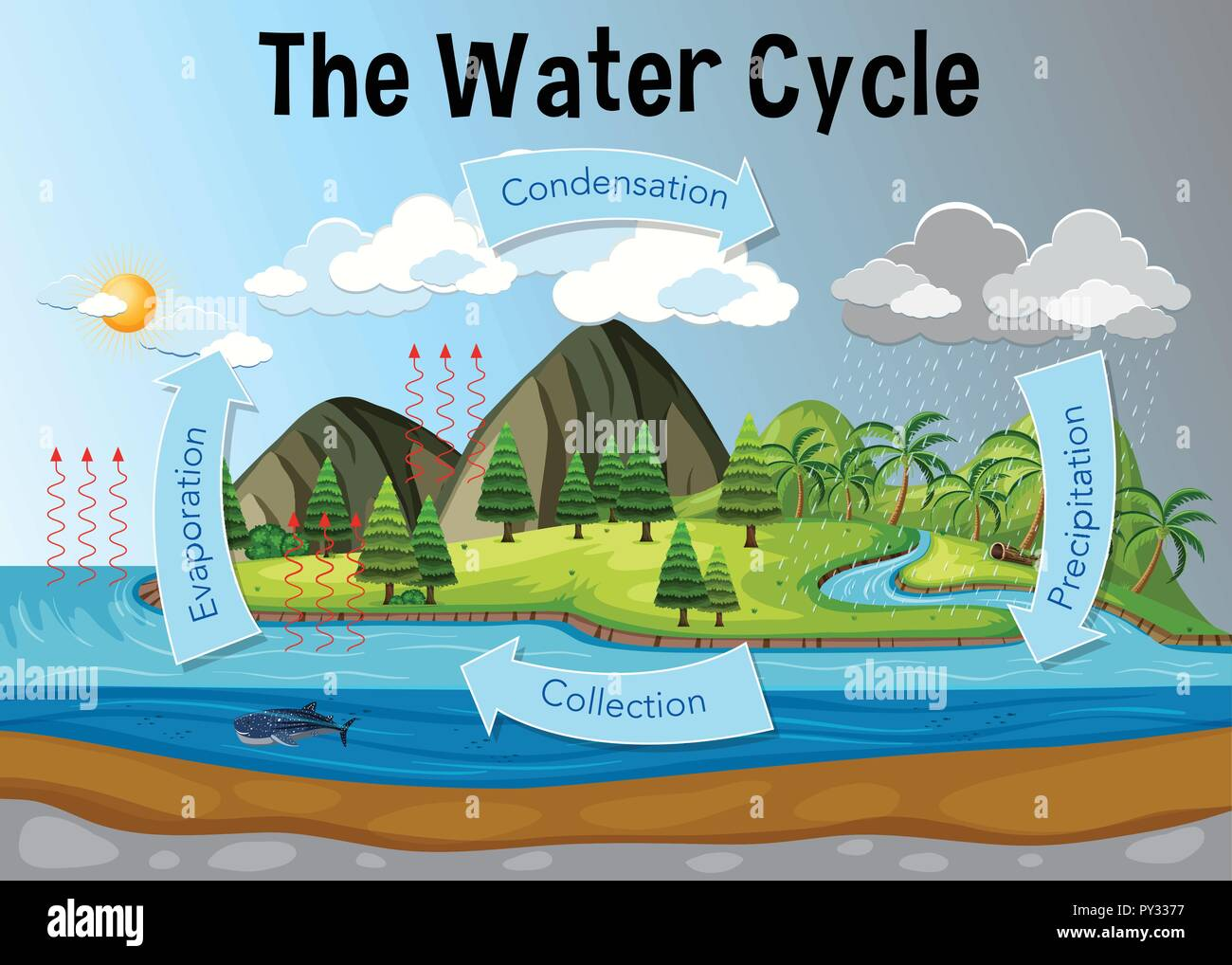 Water Cycle Diagram Stock Photos Amp Water Cycle Diagram