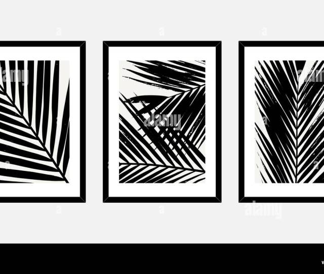 A Set Of Three Framed Art Prints With Palm Leaves In Black And White Isolated On Light Gray Background Abstract Art Posters Printable Greeting Cards