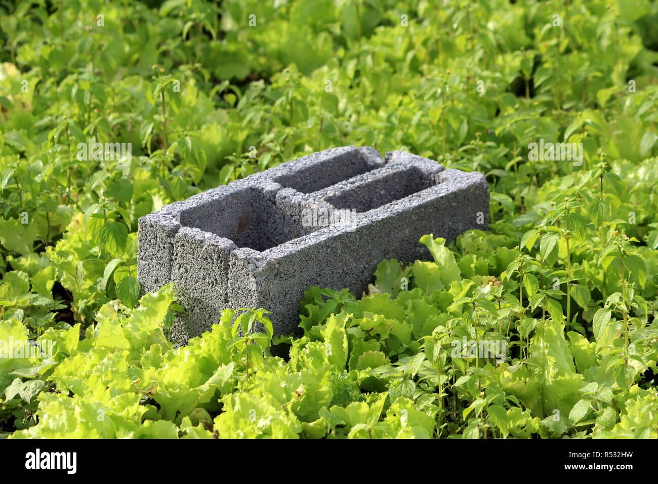 Concrete Block Garden Stock Photos & Concrete Block Garden