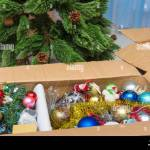 Christmas Tree Decorations In A Box In Front Of An