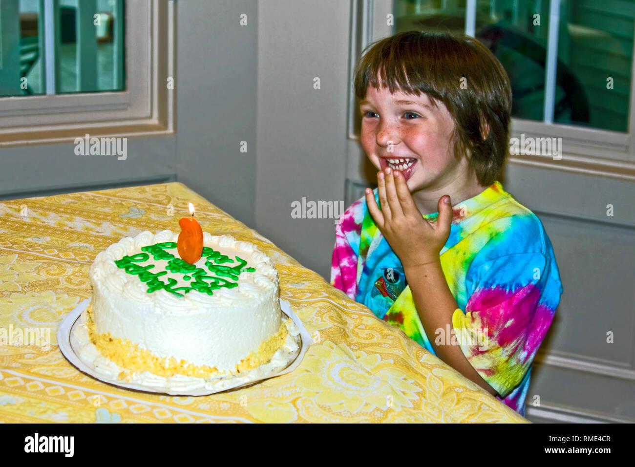 Young Boy Birthday Cake Smiling Hand At Mouth Celebration Happy Tie Dye Shirt 6 Years Old Child Celebration Horizontal Mr Stock Photo Alamy