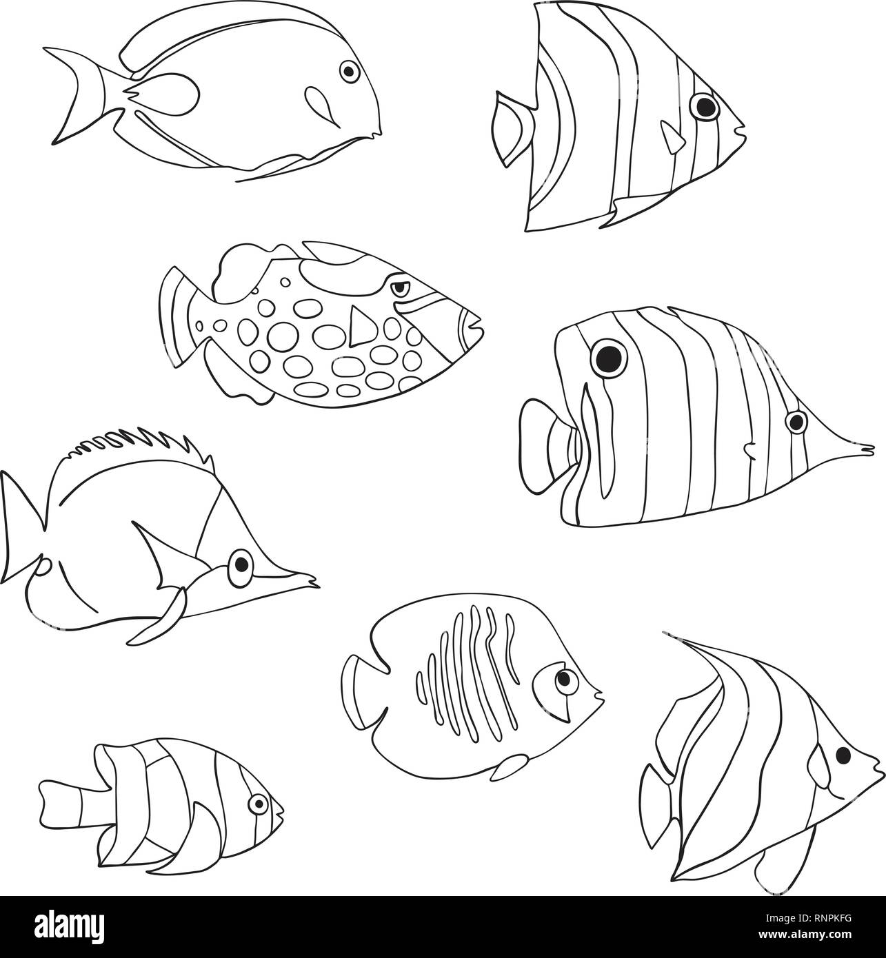Tropical Fish Icon Set Vector Isolated Characters
