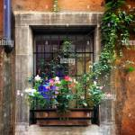 Flowers In A Window Box On A Small Street In Rome Italy Stock Photo Alamy
