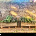 Brick Raised Bed High Resolution Stock Photography And Images Alamy