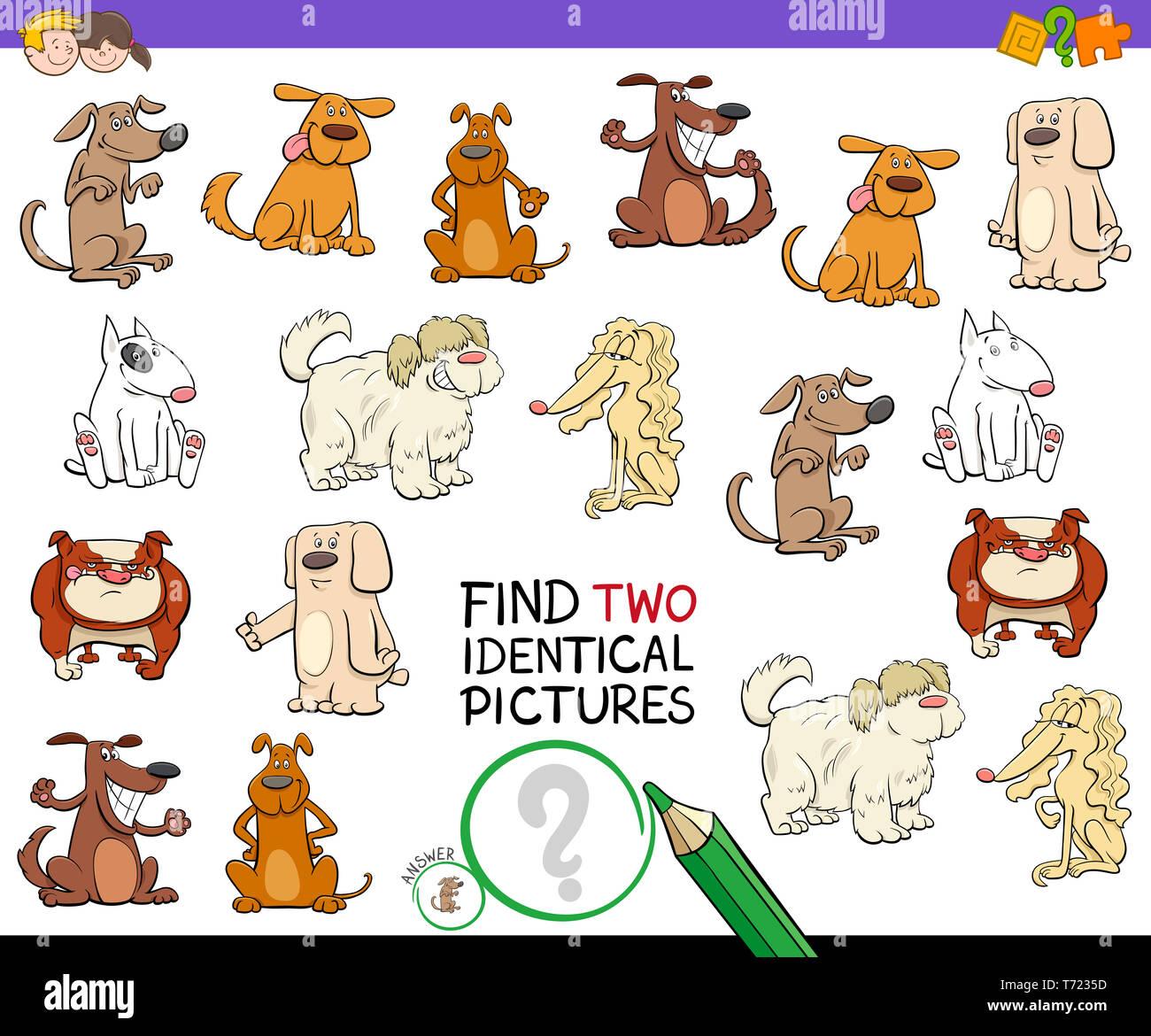 Same But Different Animals Stock Photos Amp Same But