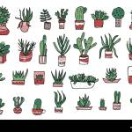 Succulents In Doodle Style Set Of House Plants Poster Banner Greeting Card Print Isolated Elements Vector Color Illustration Stock Vector Image Art Alamy