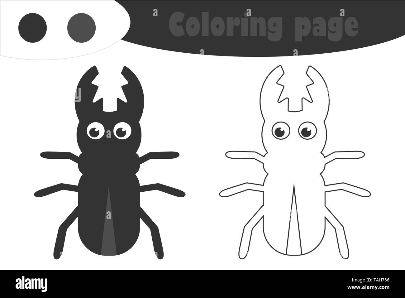 Drawing Beetle Black And White Stock Photos Amp Images