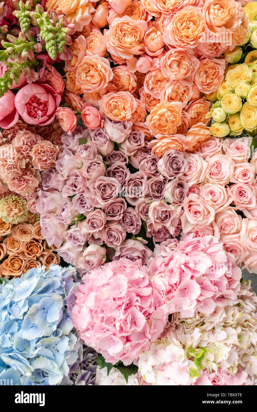 Floral Carpet Or Wallpaper Background Of Mix Of Flowers Beautiful Flower For Catalog Or Online Store Floral Shop And Delivery Concept Top View Stock Photo Alamy