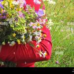 Woman In Red Is Standing On A Meadow And Holding A Wildflower Bouquet Stock Photo Alamy