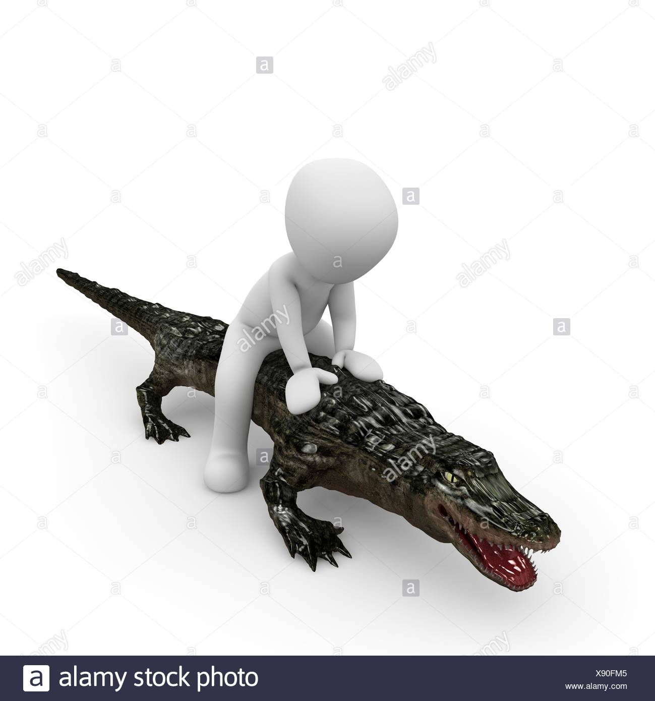Crocodile Tail Cut Out Stock Images Amp Pictures