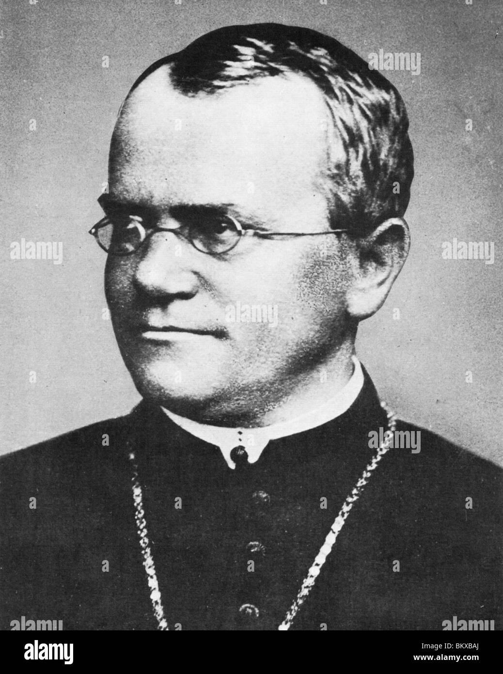 Gregor Mendel Stockfotos Und Bilder Kaufen