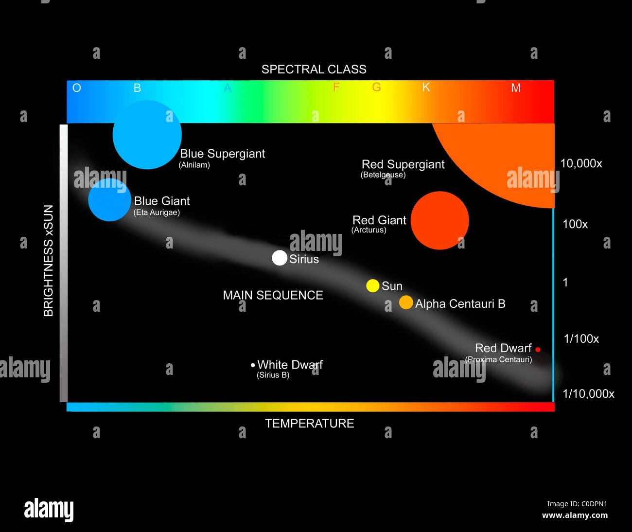 Eine Vereinfachte Herzprung Russell Diagramm Zeigt Wie Sternen Klassifiziert Sind Stockfoto