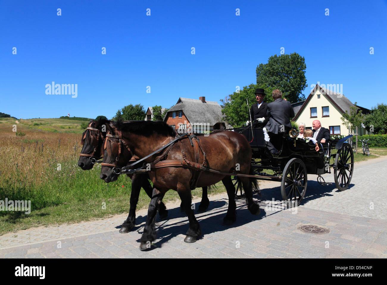 Https Www Pferd Aktuell De Files 160 Richtlinien Fuer Den Bau Und Betrieb Pferdebespannter Fahrzeuge 1 Pdf