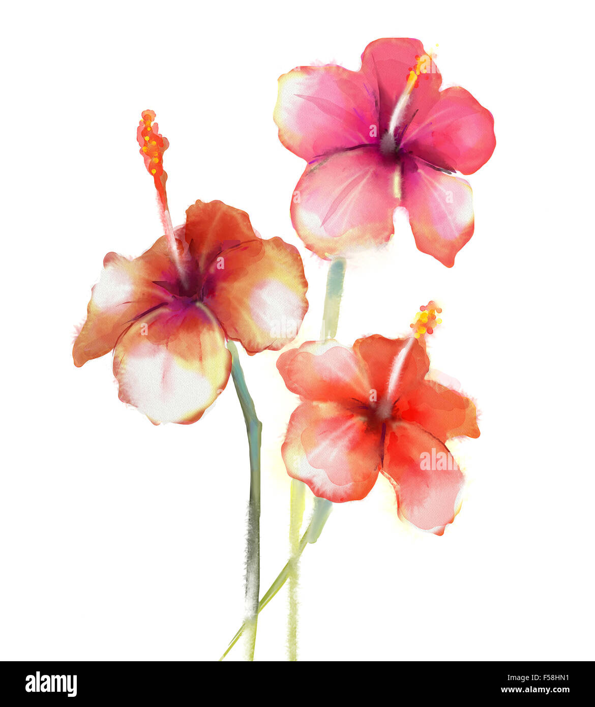 Pfingstrose Blumen Malerei Auf Vase Aus Keramik Stockfotos