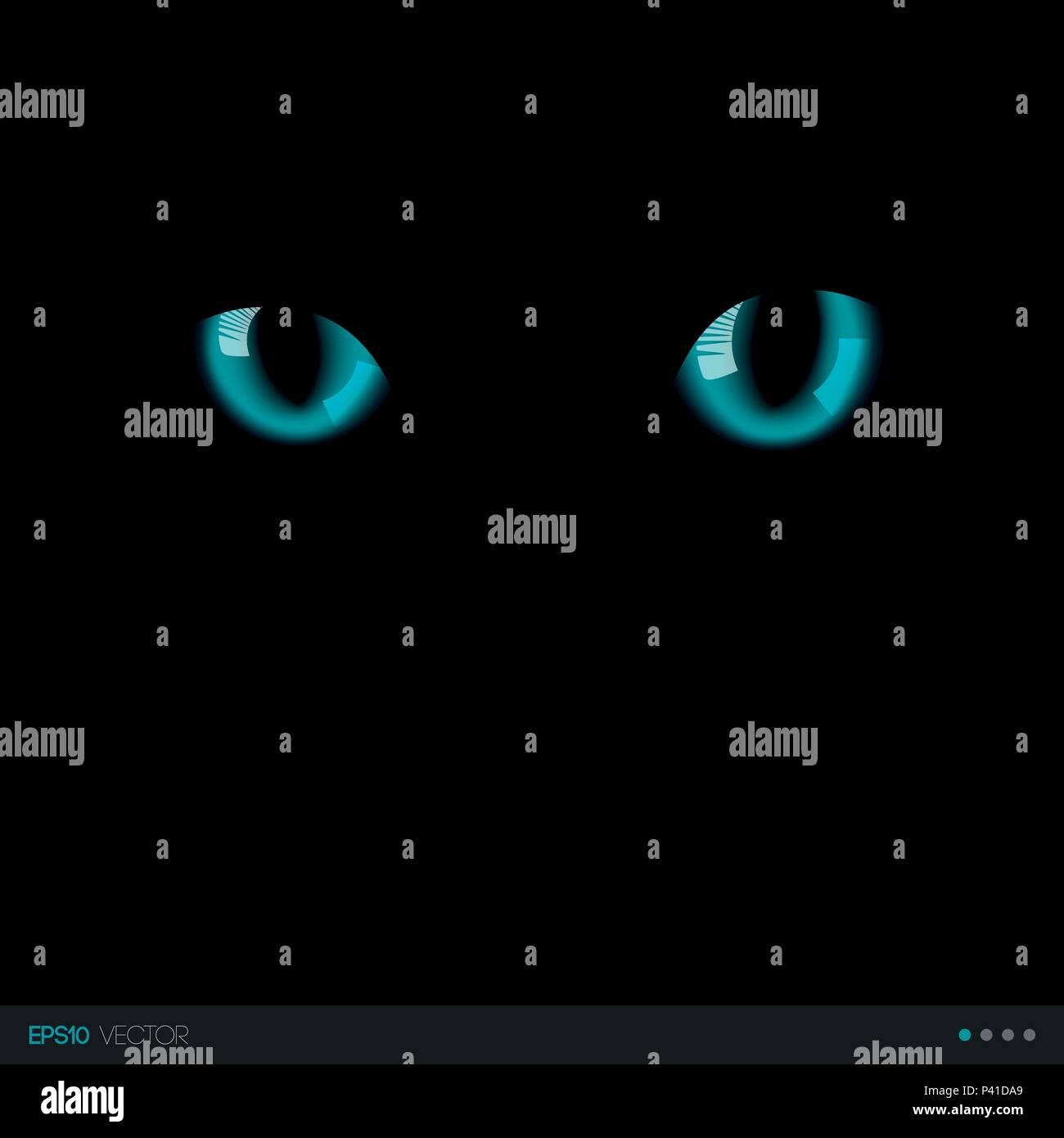 Schwarze Katze Realistisch Blauen Augen In Der Dunkelheit