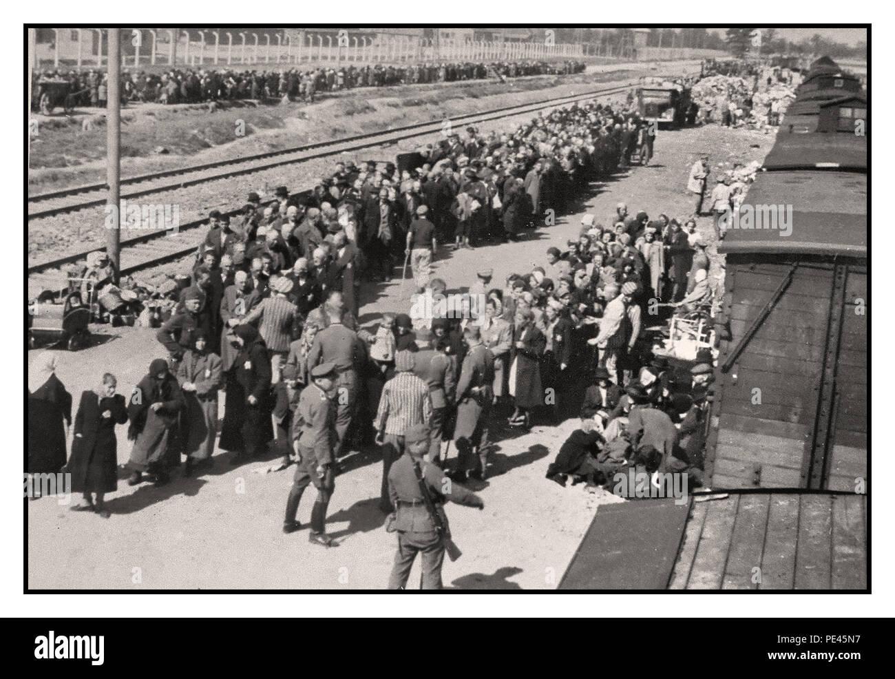 Auschwitz Children Stockfotos Amp Auschwitz Children Bilder