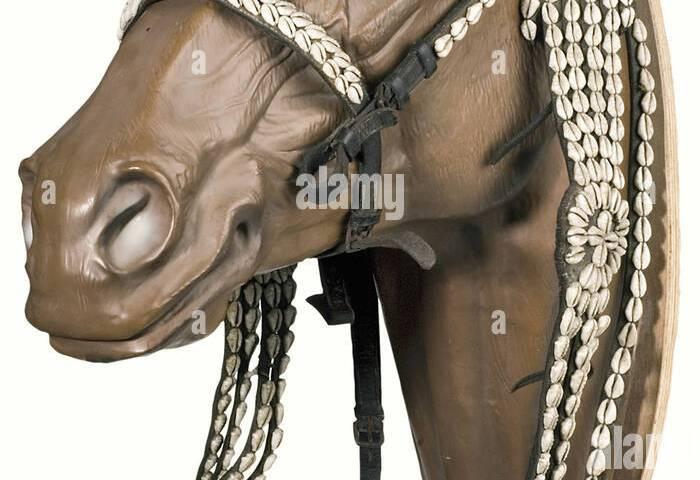 Horses Decorated Imágenes De Stock Horses Decorated Fotos De Stock