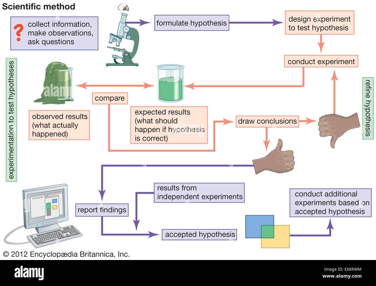 Diagrama De Flujo Del Metodo Cientifico Foto Amp Imagen De