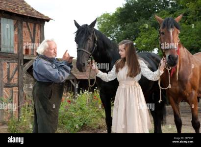 Cheval De Guerre Photo Stock - Alamy