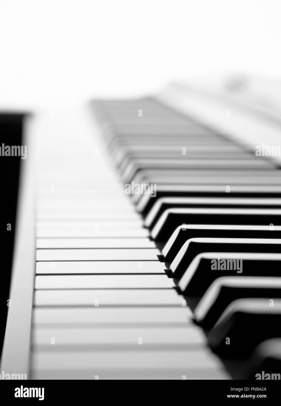 https www alamyimages fr photo image le noir et blanc selective focus clavier de piano tourne d un angle faible et d un retro eclairage par un fond blanc 99208994 html