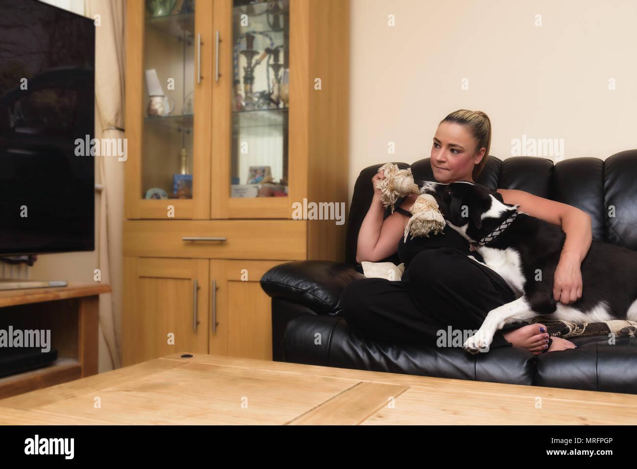 https www alamyimages fr femme essayant de regarder la television avec son chien noir et blanc sur le canape a la maison dans le salon image186587766 html