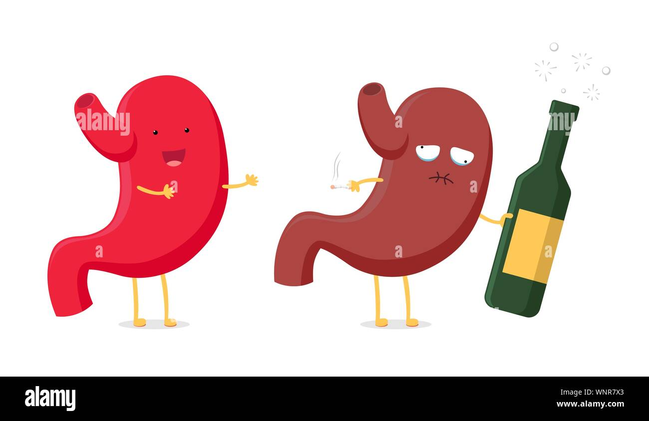 Digestive System Cartoon Immagini E Fotos Stock