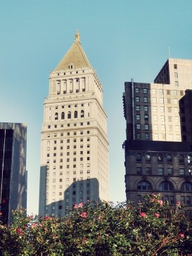Flowers and Tower, Lower Manhattan