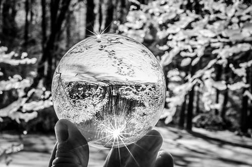 Snow Globe (30 of 31)