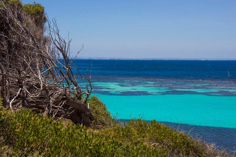 cykeltur på Rottnest Island i Vestaustralien