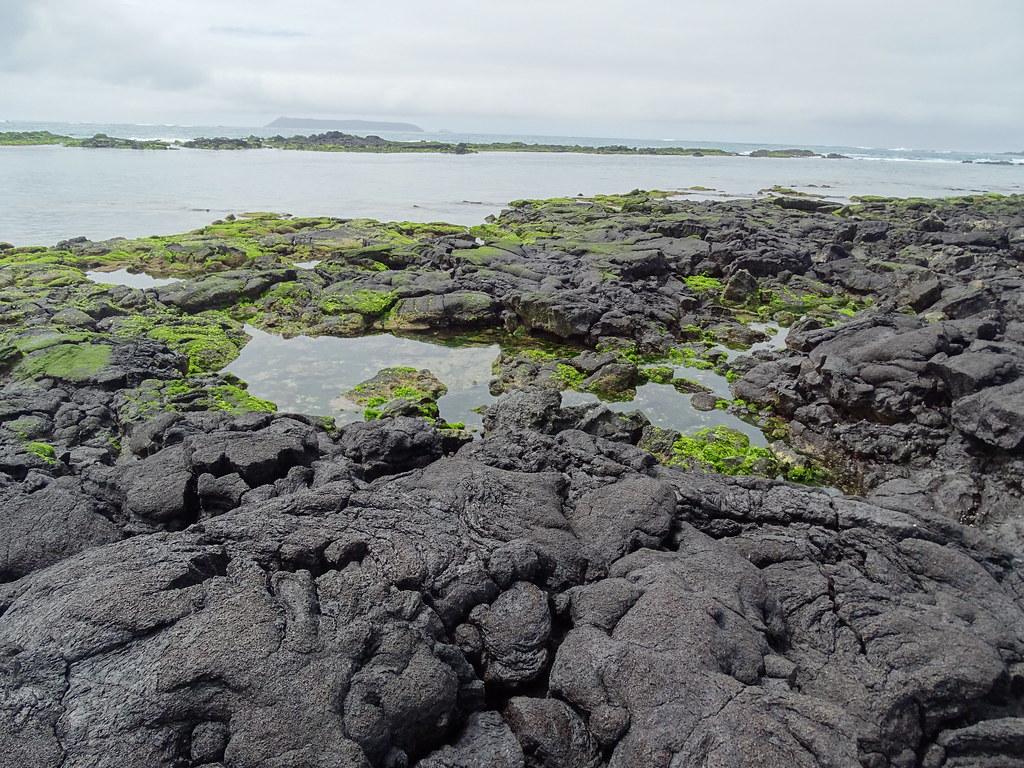 Paisaje Concha Perla Isla Isabela Parque Nacional Galapagos Ecuador 03