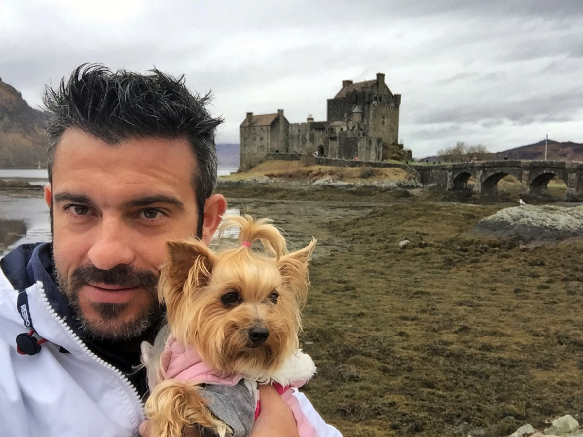 Viajar con Mascota mascotas Cómo viajar con perros y mascotas 30941135895 01c0e5f083 o