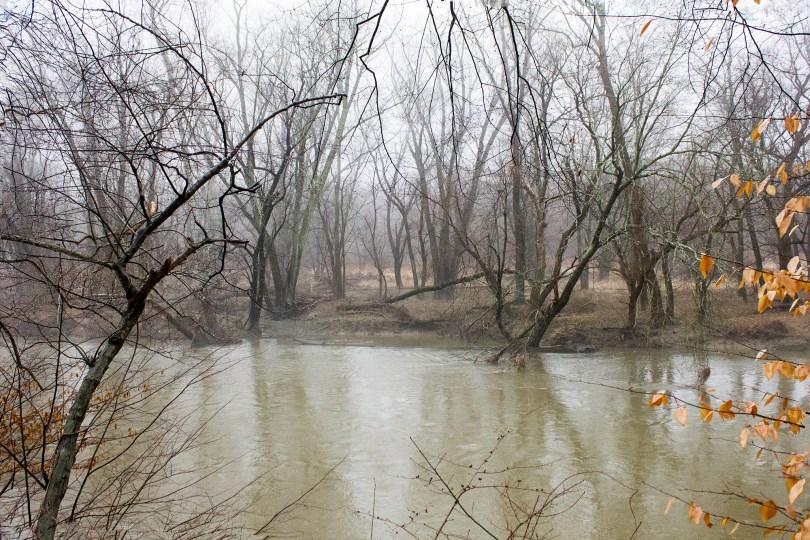 rocky-brandywine-creek-fog