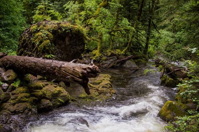 Multnomah Falls Washington