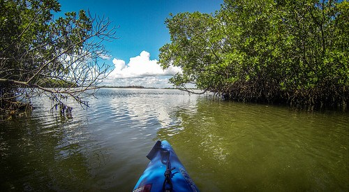 Indian River Paddling-59