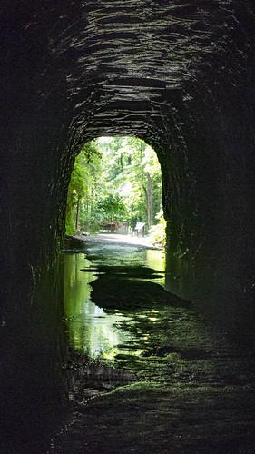 Stumphouse Tunnel-31