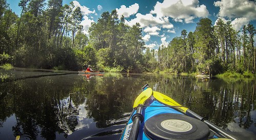 Lowcountry Unfiltered at Okefenokee-99
