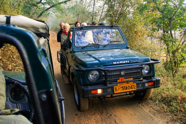Safari en Ranthambore