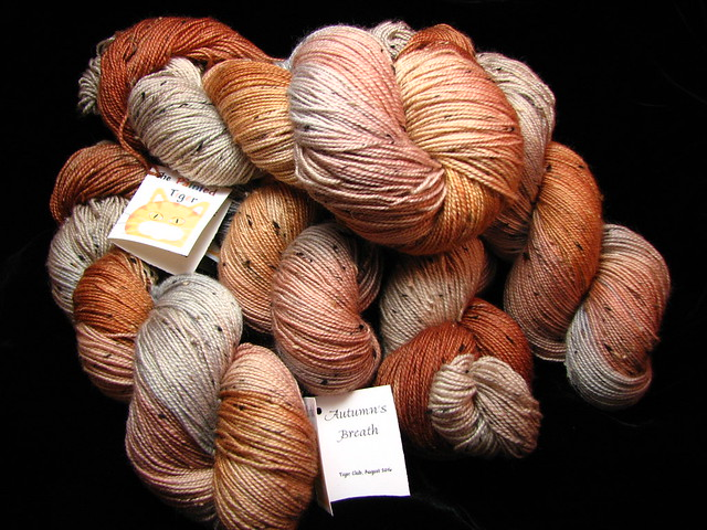 Autumn's Breath - August 2016 Tiger Club - Tiger Tweed Sock Yarn