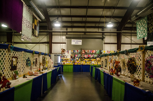 Western North Carolina Mountain Fair-44