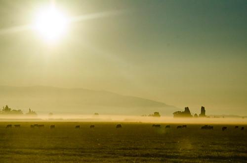 Skagit Valley Sunrise-29