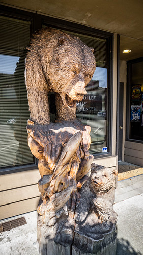 Wood Carvings in Sedro-Woolley-004