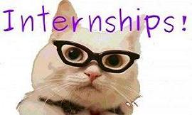 internships_cat-300x199
