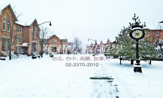JS winter dm