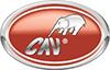 CAV_100x